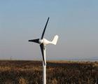 wind turbine generator 100w with pure sine ware inverter