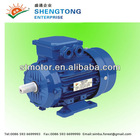 MS Series Three-Phase Motor