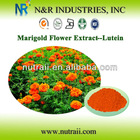 Marigold Flower Extract Powder Lutein