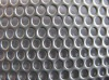 Galvanized Perforated Metal Sheet(Manufacturer)