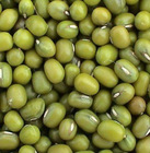 Canned Peas/Canned Green Peas