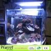 165w led aquarium light for unique aquarium decorations