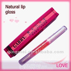 2012 new lip gloss