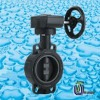 PVC Gear butterfly valve/CPVC Gear butterfly valve/UPVC Gear butterfly valve