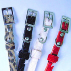 alloy metal and leather dog collar and leashes manufacturer