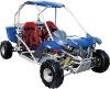 110cc Kids Buggy, 110cc Kids Go Kart(XG110-B)