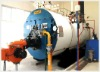 The most popular Gas Boiler in the worldwide