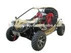 EPA 1100cc dune buggy