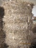 Hybrid Pennisetum Dry Grass Forage Hay