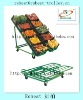 Hot sale and useful vegetable/fruit display shelf RHB-040