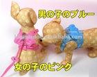 Angel knapsack with leash (pet collar&leash)