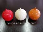Colorful Onions Plastic Storage Box