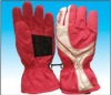 various snow glove for adult and children
