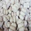 2012 Fresh Chinese White Garlic