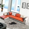 Modern Design Leather Sofa RD8007