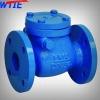 ANSI swing type check valve