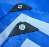 blue-white tarp