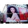 zhejiang longteng flex banner