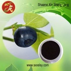 GMP supplier Bilberry extract 25% UV anthocyanins