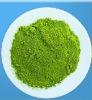 Camellia sinensis O. Ktze/Instant green tea extract