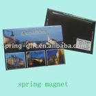 Promotion Fridge Magnet