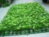 Plastic Artificial Grass Mat For Garden Decoration