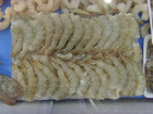 frozen white shrimp whole round