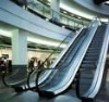 Long Service Time Home Escalator Low Price