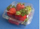 HZ1002 plastic fruit punnet