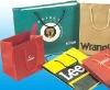 OEM Paper Packaging for Paper Shopping Bag