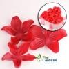Heart-shaped Flower soap FZ