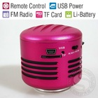 Mini Microphone Vibration Resonance Portable Speaker with FM Radio & Remote Control
