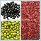 green mung bean/black beans/red beans