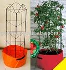 tomato growing spiral stake