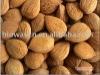 Organic Apricot Kernels