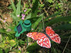 Garden decorative solar flutterby butterfly solar flying animal garden adornment solar butterfly solar flying animal