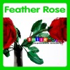 new arrival assorted colors top quality valentine feather rose