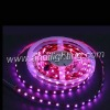 5050 led Flexible strip lights