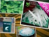 hot sale menthol crystal BP/USP/EP/JP /FCC