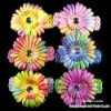 Promotion 12 Pieces Rainbow +clip+headband /lot 4inch rainbow Gerbera Daisy Children Head Accessories