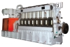 Coal Gas Generator Set