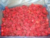 supply new crop IQF frozen Chinese strawberry