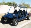 1100cc Hunting Buggy