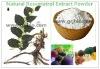 Micronized resveratrol powder 50% 98%