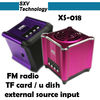 XS-018 fm radio card reader speaker with remote TF Card Speaker with FM Radio U Disk External Source Input