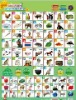 Thai phonic wall chart for kids