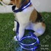 Led pet collars and leashes