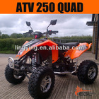 EEC ATV 250cc quad with unique design