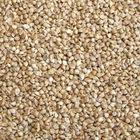 Dark tare seeds