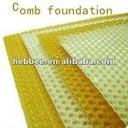 best foundation honey bee equipment